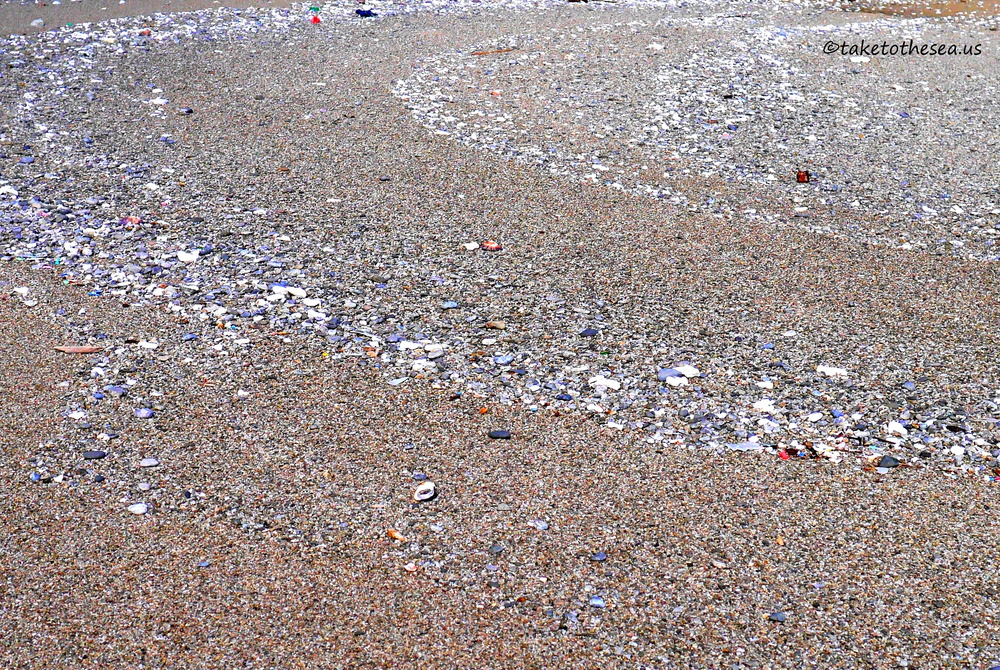 Waves of sand and pebbles. There was SO MUCH beautiful beach glass on this island. I was in heaven.